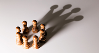 Image of Image of chess pawns